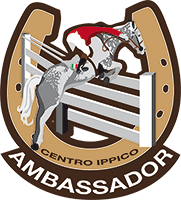 coupon-ambassador-definitivo1909
