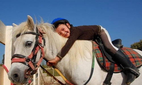 Avvicinamento al mondo dei pony 2